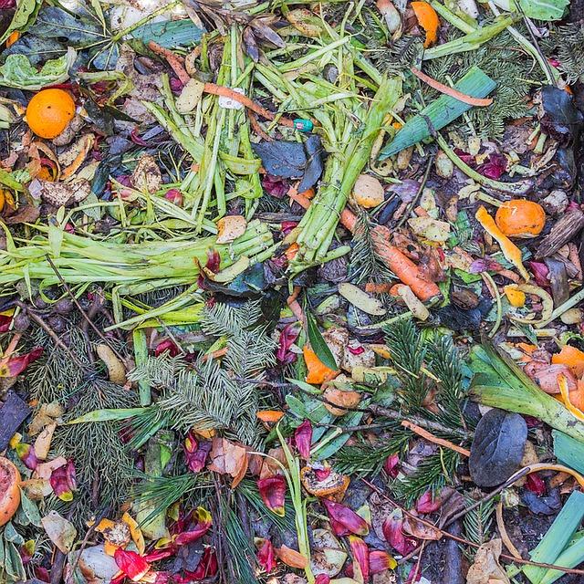 pixabay-meineresterampe-compost-1136403_640